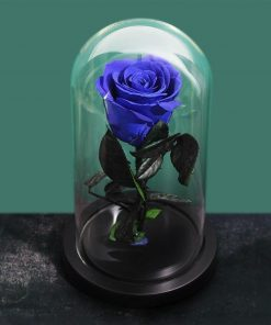 Jolie Rose Éternelle