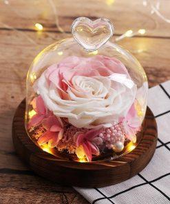 Cocon Rose Éternelle