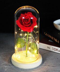 Vrai Rose Éternelle